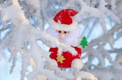 Santa Claus on the tree. Royalty Free Stock Images