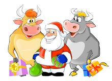 Santa Claus and two bulls. A colorful illustration of Santa Claus surrounded by two happy, smiling bulls carrying Christmas gifts stock illustration