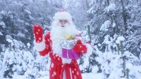 Santa Claus voor Kerstmis met giften in het de winterbos stock footage