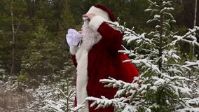 Santa Claus is watching the forest. In winter day stock video