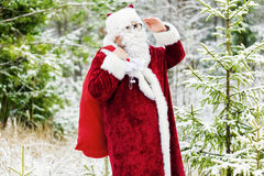 Santa Claus is watching the forest Stock Photography