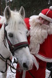 Santa Claus with white horse Stock Photos