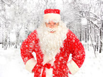 Santa Claus in Winter Forest Royalty Free Stock Photos