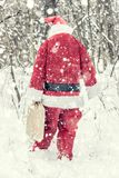 Santa Claus in the woods Stock Photography