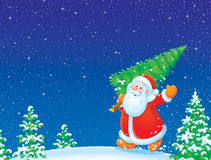 Santa Claus with Xmas  tree Royalty Free Stock Photography