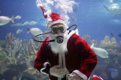 Santa Clause. Underwater Santa Clause (note: image is slightly grainy due to low light condition royalty free stock photos