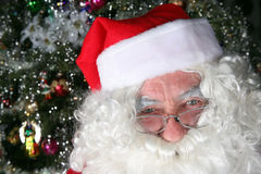 Santa clause. Elderly santa clause closeup in front of a christmas tree royalty free stock photo