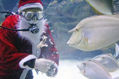 Santa Clause Feeding Fishes Stock Photo