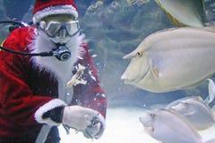 Santa Clause Feeding Fishes Stock Photo