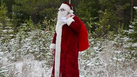 Santa Clause with gift bag in the forest stock footage