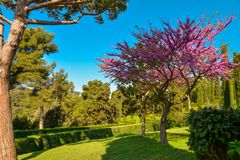 Santa Clotilde Gardens. Beautiful view in the Santa Clotilde Gardens in Lloret de Mar, Spain Royalty Free Stock Image
