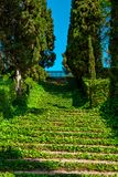 Santa Clotilde Gardens. Staircase covered with ivy in the Santa Clotilde Gardens in Lloret de Mar royalty free stock image