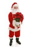 Santa com corpo cheio dos Poinsettias Fotos de Stock Royalty Free