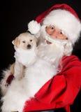 Santa com o cão do retriever dourado Fotografia de Stock Royalty Free