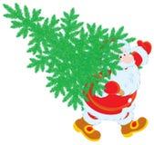Santa con l'albero di Natale Fotografia Stock