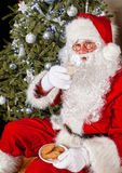 Santa with cookies and milk. Santa claus in front of a christmas tree eating cookies and milk Stock Image