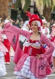 Santa Cruz de Tenerife Carnival 2014 Fotografie Stock Libere da Diritti