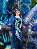 Santa Cruz de Tenerife Carnival: The big Parade Royalty Free Stock Images