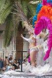 Santa Cruz de Tenerife karnawał 2014 Obraz Royalty Free