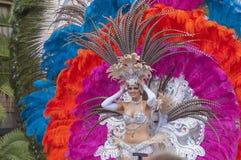 Santa Cruz de Tenerife karneval 2014 Fotografering för Bildbyråer