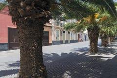 Santa Cruz de Tenerife Stock Photography