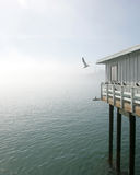 Santa Cruz Dock in the fog Stock Photography