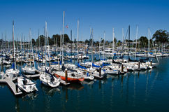 Santa Cruz Harbor Images stock