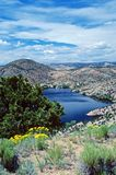 Santa Cruz lake. With yellow wildflowers, blue skies with clouds Royalty Free Stock Photography