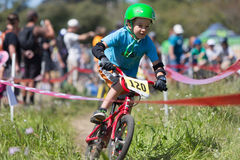 Santa Cruz Mountain Bike Festival Stock Images