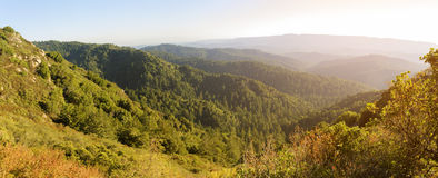 Santa Cruz Mountains Arkivfoto