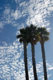 Santa Cruz sky. Afternoon sky in Santa Cruz, California Royalty Free Stock Image
