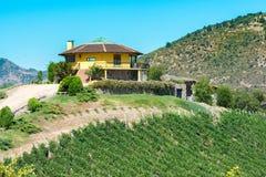 Santa Cruz Vineyard. Santa Cruz, O`Higgins Region, Chile - December 20, 2016: A view of Santa Cruz vineyard in the Colchagua Valley, an emerging tourist stock images