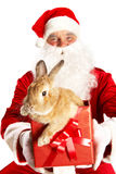Santa with cute bunny Royalty Free Stock Photos
