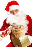 Santa with cute pet Stock Photo