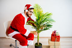 Santa decorating a tree Royalty Free Stock Photo