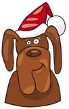 Santa dog Stock Photos