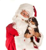 Santa with dog Royalty Free Stock Images