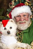Santa And Dog Royalty Free Stock Photos