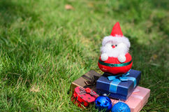 Santa doll with christmas decoration on green grass Royalty Free Stock Photo