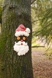 Santa Drzewna twarz Fotografia Stock