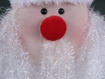 Santa Face Lizenzfreie Stockfotos
