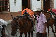 Santa Fe de Antioquia, Колумбия - 26-ое июня 2017: Фермер работая w Стоковые Изображения RF