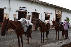 Santa Fe de Antioquia, Colombia - junio 26.207: Foto del hombre y de tres caballos Fotos de archivo