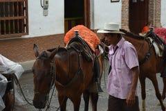 Santa Fe de Antioquia, Kolumbien - 26. Juni 2017: Landwirt, der w Arbeits ist Lizenzfreie Stockbilder