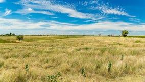 Santa Fe Trail Ruts lizenzfreie stockfotos