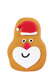 Santa Gingerbread Royalty Free Stock Photography