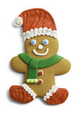 Santa Gingerbread Cookie Stock Photography