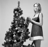 Santa girl with christmas tree Royalty Free Stock Image