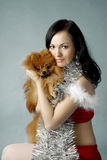Santa girl and dog Royalty Free Stock Photography