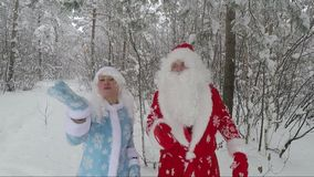 Santa and granddaughter in the snow-covered forest. Slow Motion Picture. Santa in a red hat and with a white beard and a beautiful merry granddaughter make the stock video footage